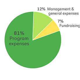 Pie chart of Kiva's 2017 expenses