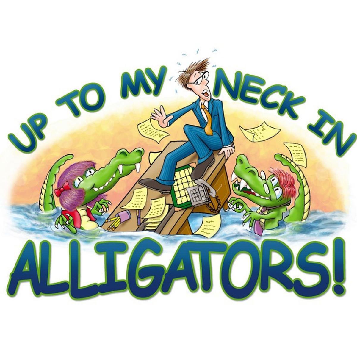 eb47d9a80 Kiva Lending Team: Up To My Neck In Alligators | Kiva