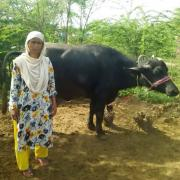 Nighat