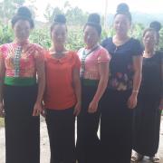 Suoi's Group