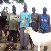 Sewesse Group