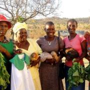 Masiiwa Group