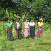 Nwar Htein(1)B Village Group
