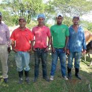 El Pino Uno Group