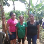 Grupo Lotificacion Santa Ana 2 Group
