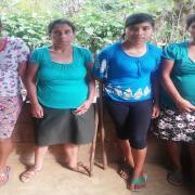 Grupo Pajales Anexo 2-04 Group
