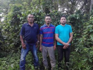 G.s El Corozal Group