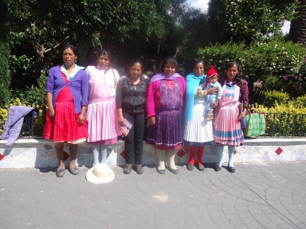 6 Palomas Group
