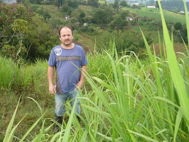 Gilberto De Jesús
